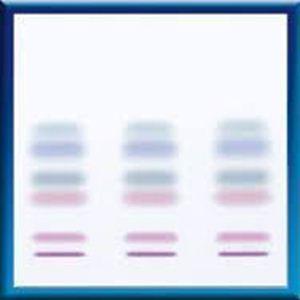Picture of TLC-plates Nano-SILGUR-20, 10x10 811032