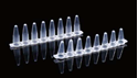 Picture of 0.1ml PCR 8-strip Tubes, clear 403102